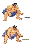 e_honda___street_fighter_ii_by_viniciusmt2007